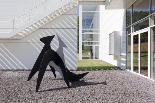 Alexander Calder - Hextopus