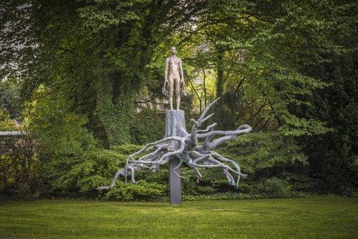 Aron demetz heimat arp museum bahnhof rolandseck for Interieur no 253